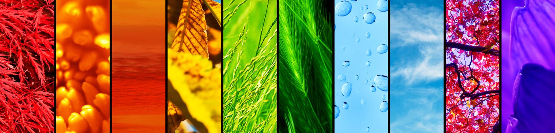 Odkryj świat kolorów!
